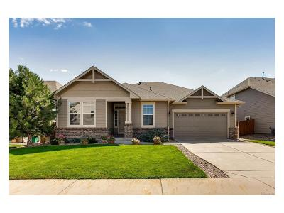 Morrison Single Family Home Active: 4778 South Coors Court