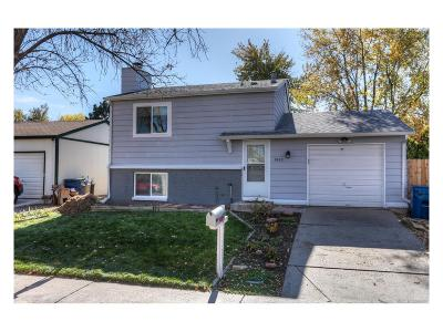 Aurora, Denver Single Family Home Active: 4833 South Pitkin Court