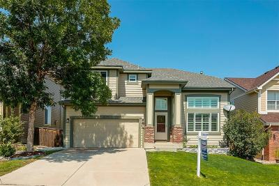 Parker Single Family Home Active: 16199 Rock Crystal Drive