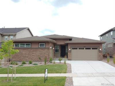 Arvada Single Family Home Active: 8823 Flattop Street