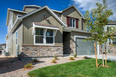 Castle Rock Single Family Home Under Contract: 1273 Basalt Ridge Loop