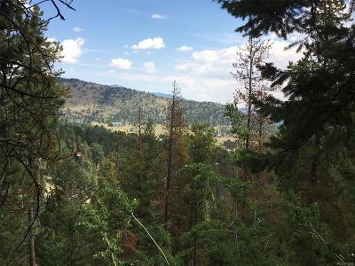 Conifer, Evergreen Single Family Home Under Contract: 428 Hideaway Circle