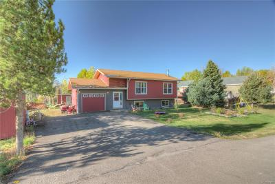 Steamboat Springs Single Family Home Active: 40375 Anchor Way