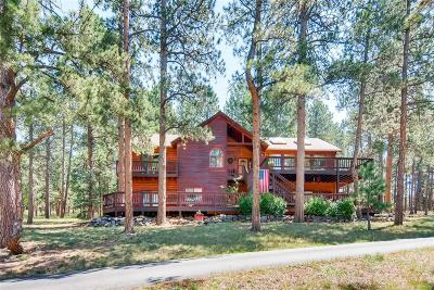 Conifer Single Family Home Sold: 9948 Fallen Rock Road