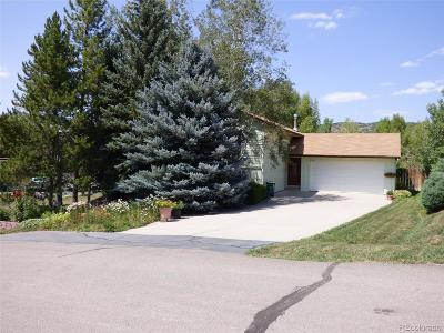 Routt County Single Family Home Active: 27360 Sunrise Lane