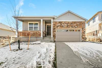 Castle Rock Single Family Home Active: 2012 Shadow Creek Drive