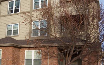 Parker Condo/Townhouse Under Contract: 12770 Ironstone Way #204