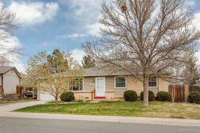 Single Family Home Active: 4598 South Coors Court