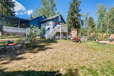 Evergreen Single Family Home Under Contract: 156 Beaver Lane