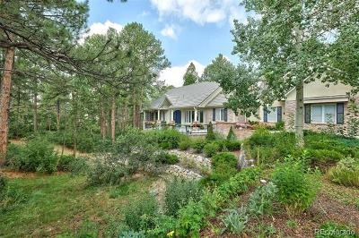 Castle Pines Village, Castle Pines Villages Single Family Home Active: 315 Prospect Drive
