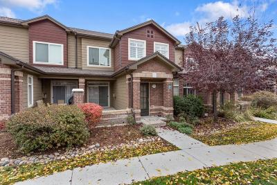 Highlands Ranch Condo/Townhouse Under Contract: 6506 Silver Mesa Drive #C