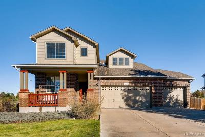 Adams County Single Family Home Active: 12978 Newport Way