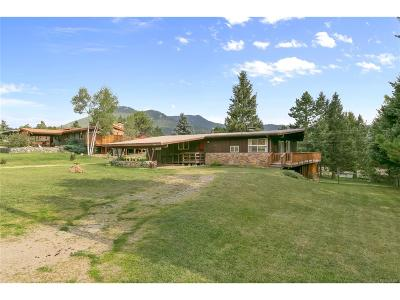 Evergreen Single Family Home Under Contract: 28186 Lupine Drive