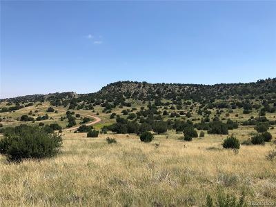 Residential Lots & Land Active: Pope Valley Ranch Road