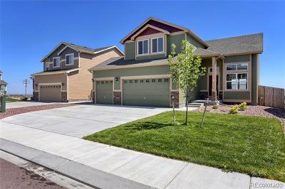 Peyton Single Family Home Active: 10817 Scenic Brush Drive