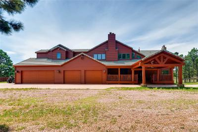 Single Family Home Active: 13765 New Discovery Road