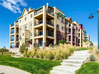 Condo/Townhouse Sold: 1162 Rockhurst Drive #202