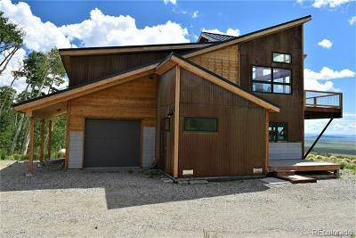 Fairplay Single Family Home Active: 2831 High Creek Road