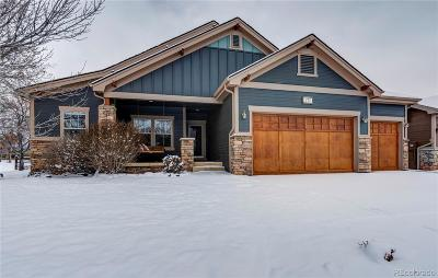 Fort Collins Single Family Home Active: 772 Jutland Lane