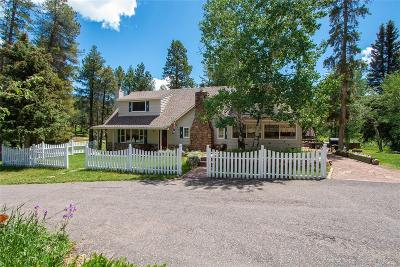 Conifer Single Family Home Active: 29152 Shadow Mountain Drive