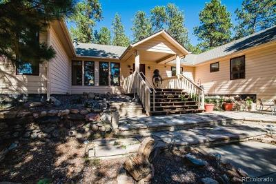 Conifer, Evergreen Single Family Home Active: 4087 Ponderosa Drive