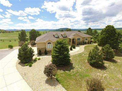 Castle Rock Single Family Home Active: 990 Glade Gulch Road