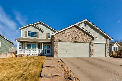 Centennial Single Family Home Under Contract: 5450 South Nepal Court