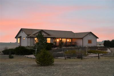 Elbert County Single Family Home Active: 29126 Clear View Circle