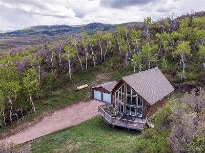 Steamboat Springs Single Family Home Active: 27250 Aspen Valley Lane