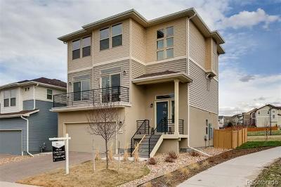 Castle Rock Single Family Home Active: 3139 Hardin Street