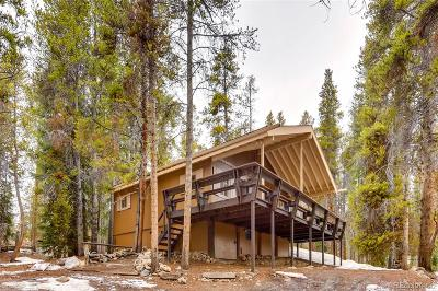 Leadville Single Family Home Active: 107 East Dream Home Drive
