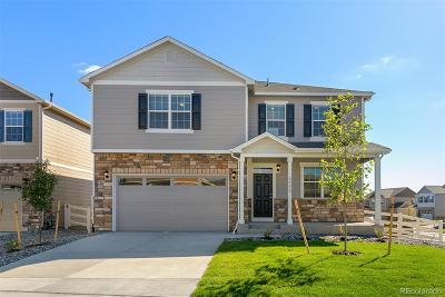 Castle Rock Single Family Home Active: 5995 Sun Mesa Circle