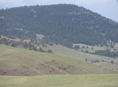 Park County Residential Lots & Land Active: Black Beaver Trail