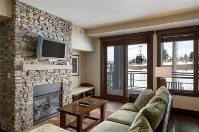 Steamboat Springs Condo/Townhouse Active: 1175 Bangtail Way #3122