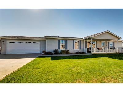 Frederick Single Family Home Active: 6120 Needlegrass Green #302