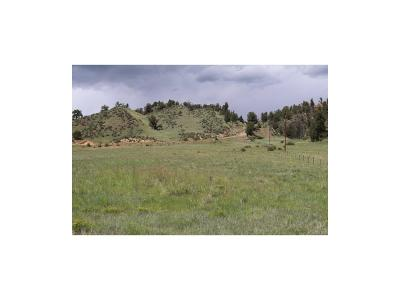Hartsel Residential Lots & Land Active: 861 Summit Road