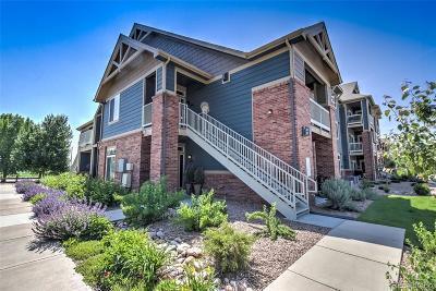 Longmont Condo/Townhouse Under Contract: 804 Summer Hawk Drive #201