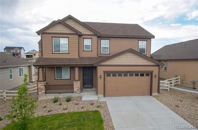 Castle Rock Single Family Home Active: 2953 Echo Park Drive
