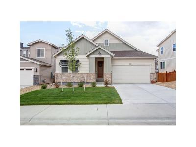 Castle Rock Single Family Home Active: 3948 Long Rifle Drive