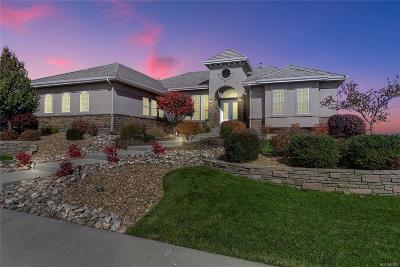 Castle Rock Single Family Home Under Contract: 1175 Cinnabar Drive