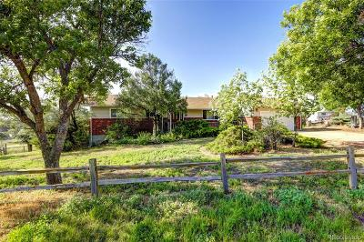 Adams County Single Family Home Active: 9880 East 157th Avenue