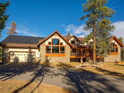 Conifer Single Family Home Sold: 10120 Apache Spring Drive
