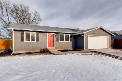 Arvada Single Family Home Active: 8675 West 86th Court