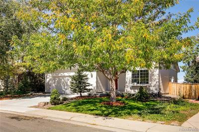 Highlands Ranch Single Family Home Active: 4855 Ashbrook Circle