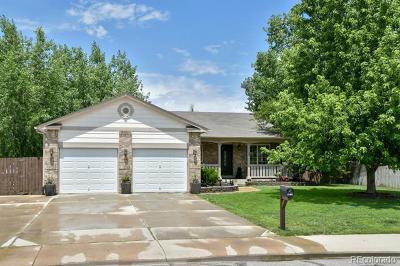 Brighton Single Family Home Active: 1123 Denver Street