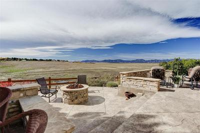 Broomfield Single Family Home Under Contract: 14957 Wistera Way