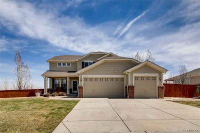 Parker Single Family Home Active: 11894 Hitching Post Court