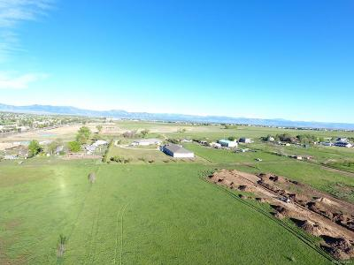 Broomfield Residential Lots & Land Active: 3356 Prospect Court