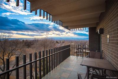 Wash Park, Washington, Washington Park, Washington Park East, Washington Park West Condo/Townhouse Active: 480 South Marion Parkway #805