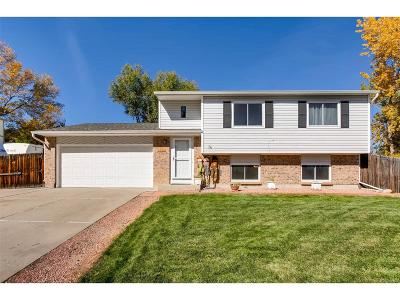 Denver Single Family Home Active: 4913 South Field Court